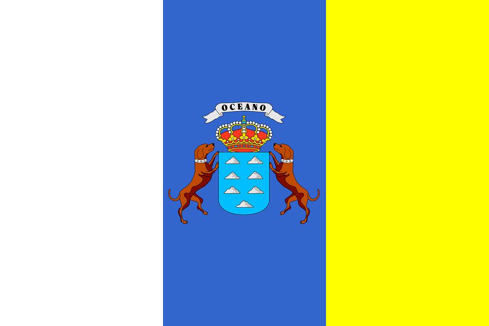 bandera canaraias desfibriladores