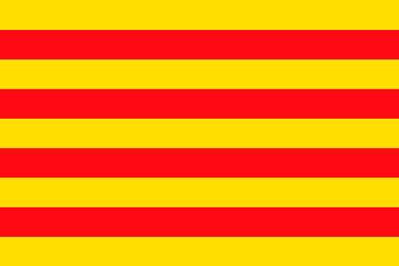bandera-catalunya-desfibriladores